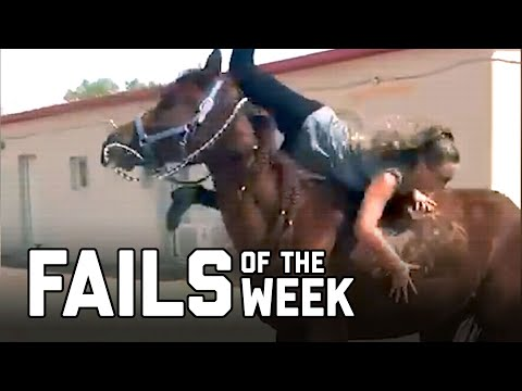 Horse Girl: Fails of the Week (July 2020) | FailArmy